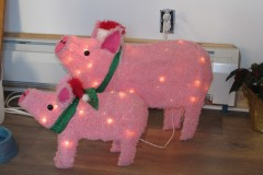 holiday pigs