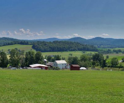 Simply Grazin' view in Upstate NY