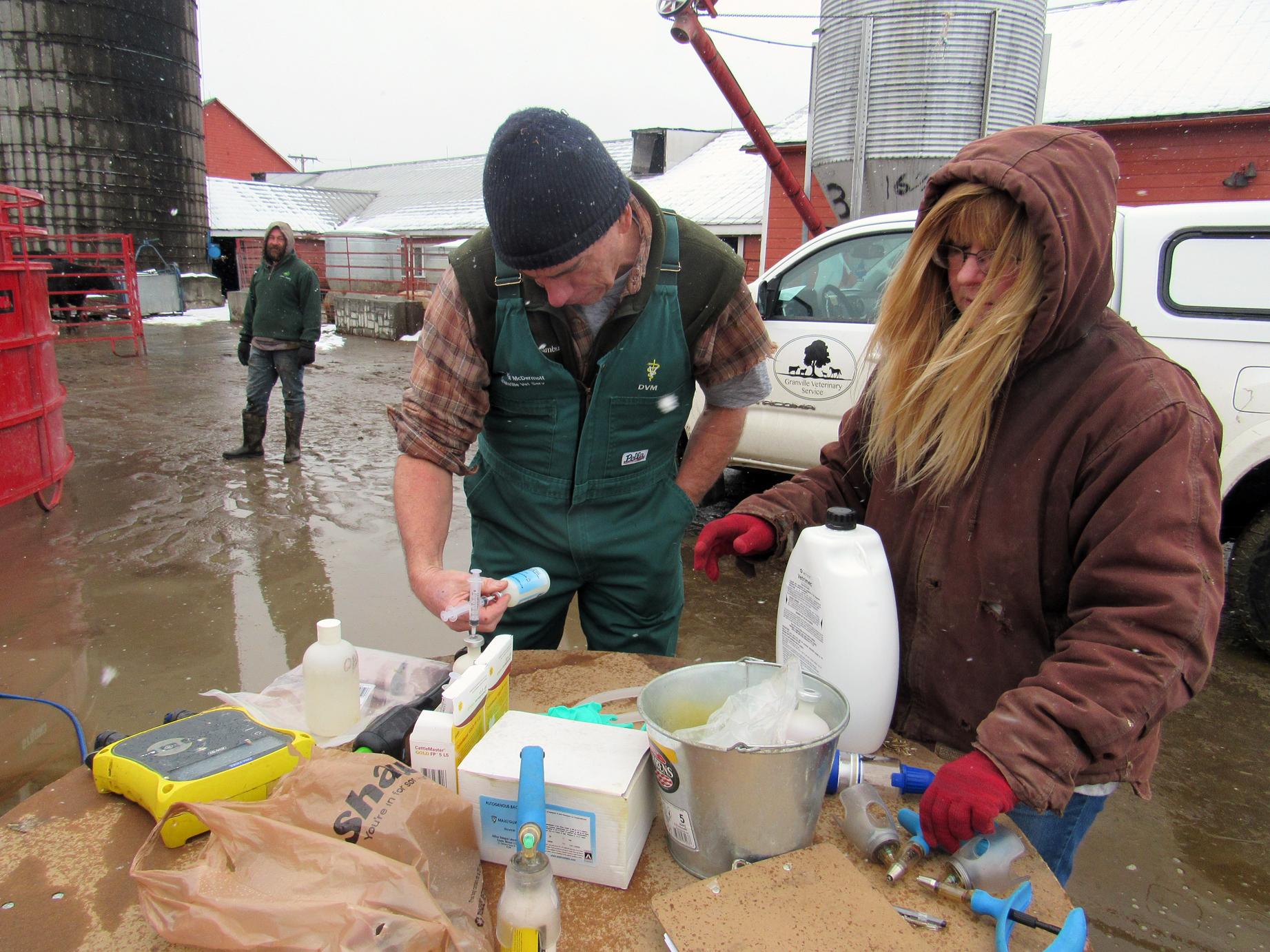 Dr. John McDermott and Karen Killmartin getting ready for herd health check