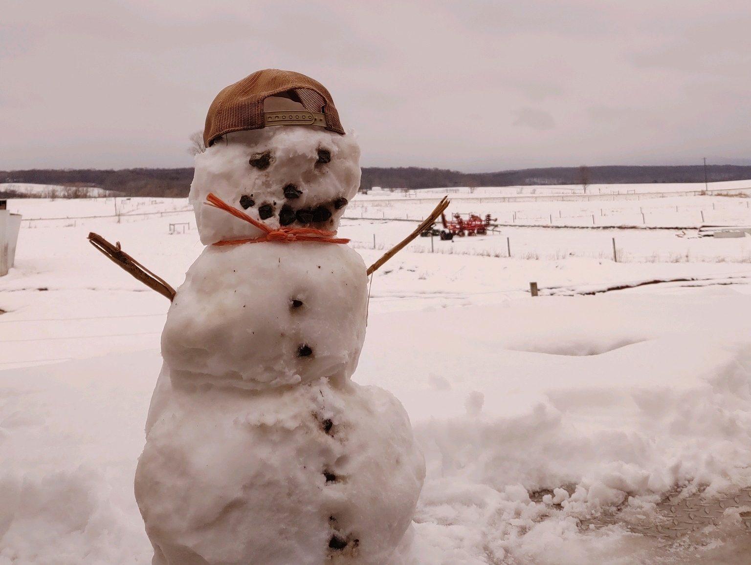 farm snowman