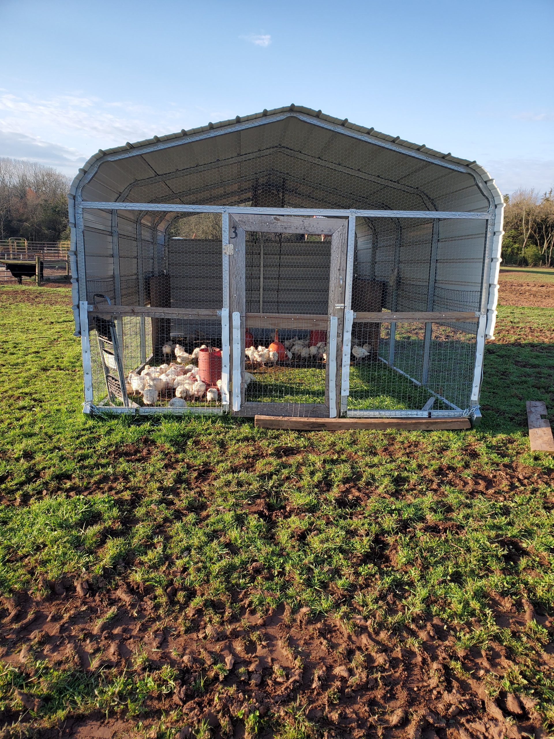 Custom made poultry pen