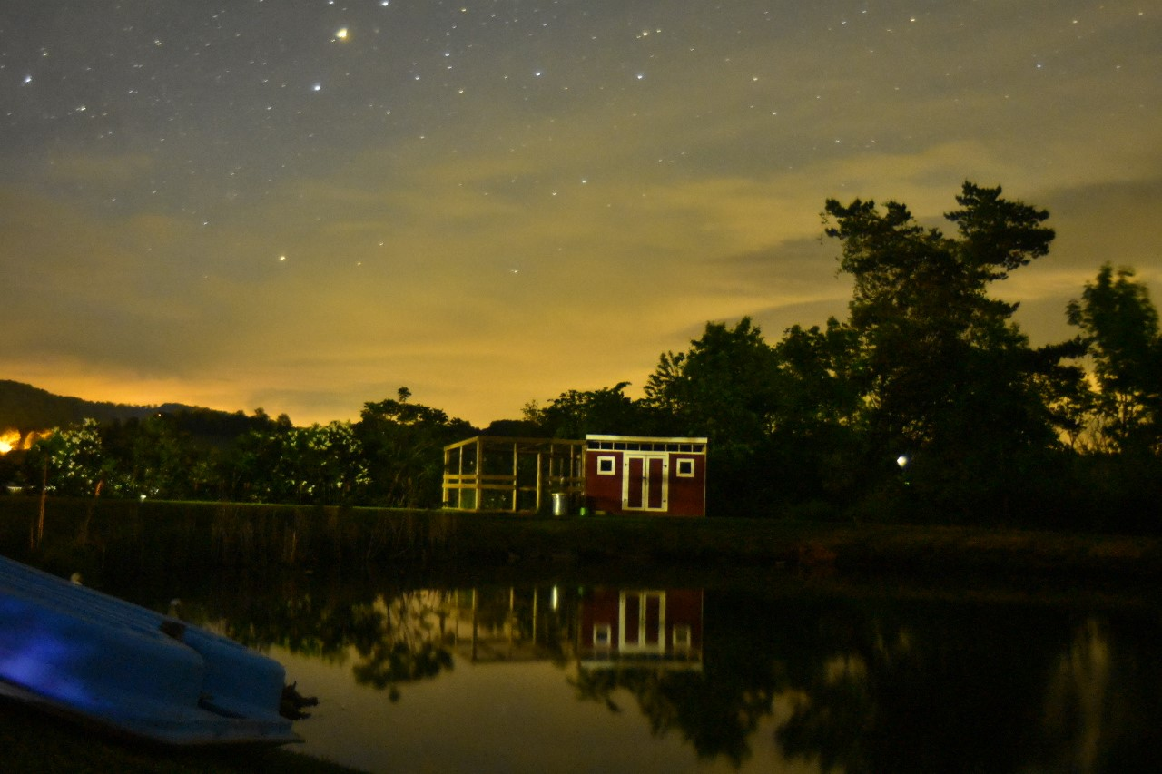 night sky over the duck house