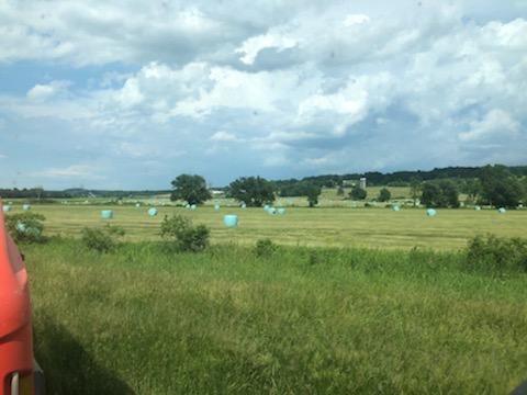 summer crop work upstate NY farm